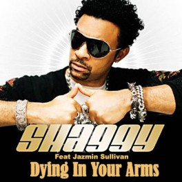Shaggy_Ft.Jazmin.Sullivan-Dying.In_.Your_.Arms_