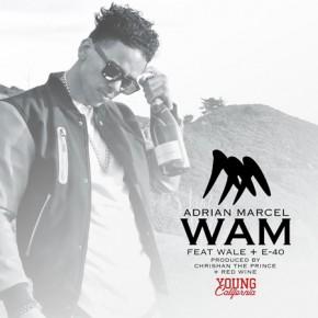 Adrian-Marcel-WAM-YC