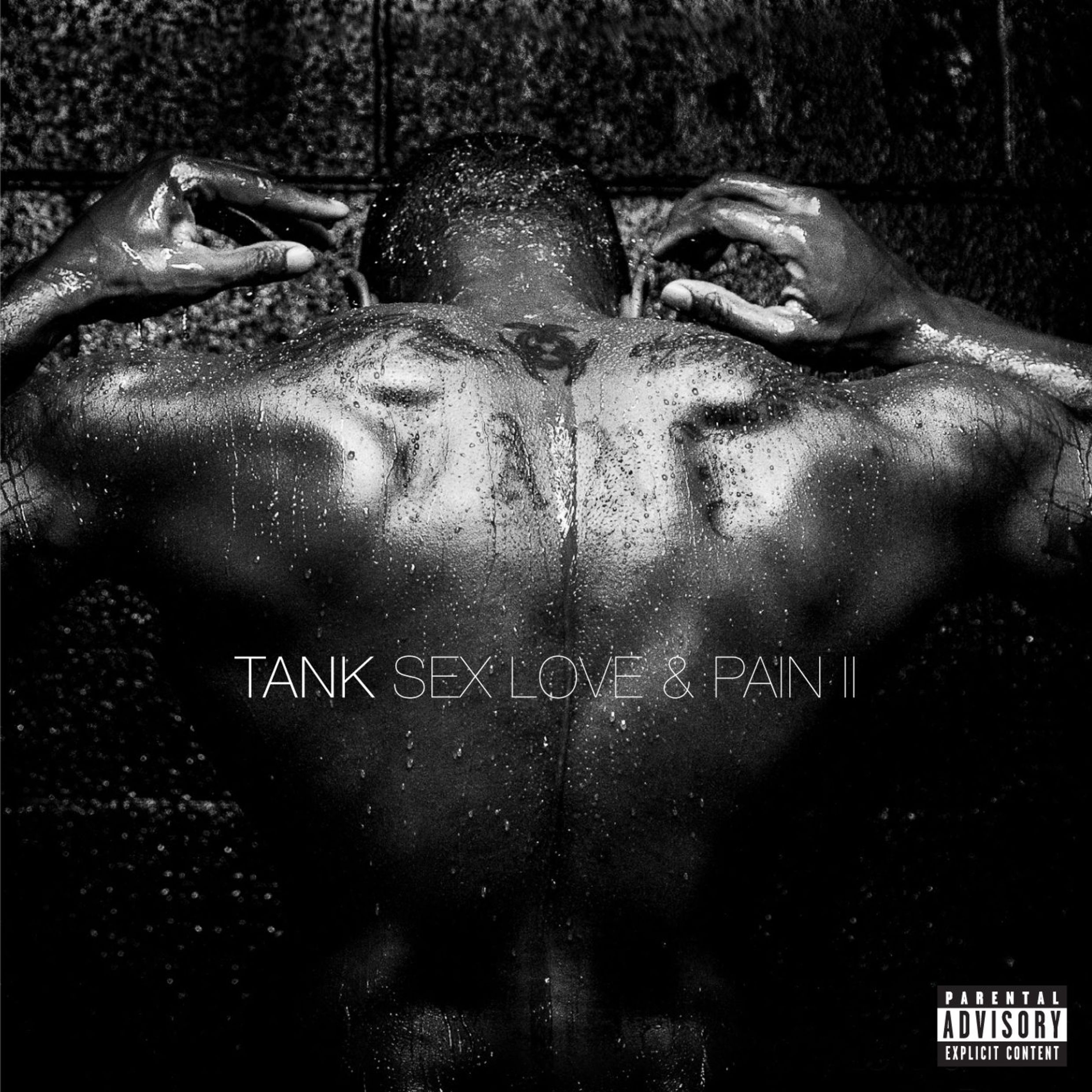 Tank-Sex-Love-Pain-II-2016-2480x2480